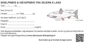 Skælprøve dansk